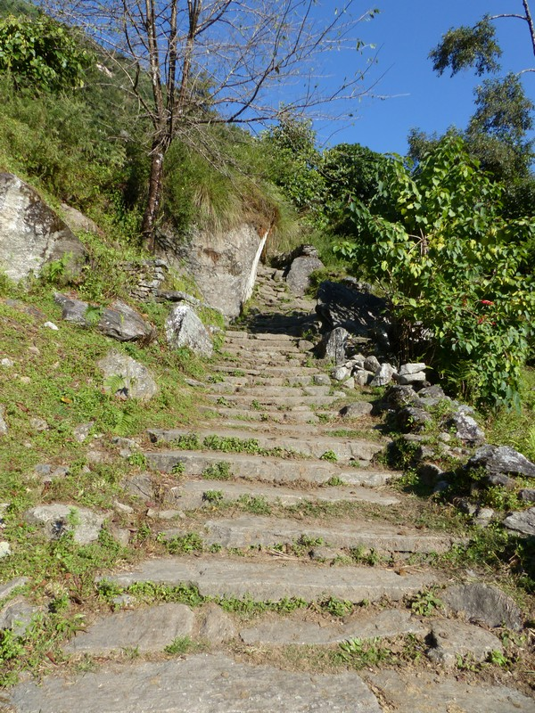 Some of the +4000 stairs