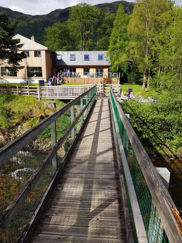 Bridge at youth hostel