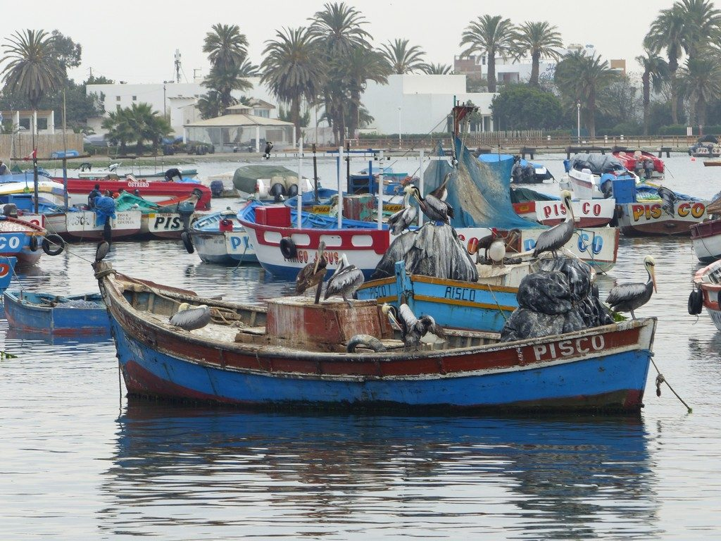 Pisco harbour